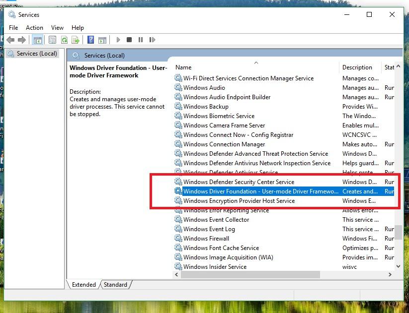 Windows Driver Foundation service
